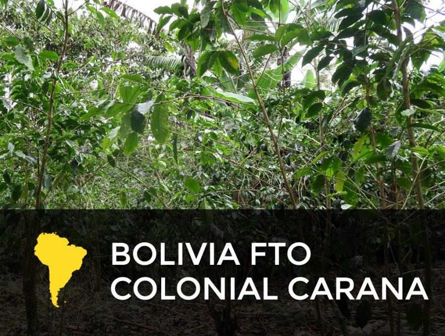 Bolivia FTO Colonial Carana 900x680  Bolivia FTO Colonial Caranavi - Out of Stock