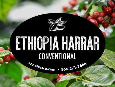 Ethiopia Harrar Conventional Green Beans 375x283  46LB Build a Box