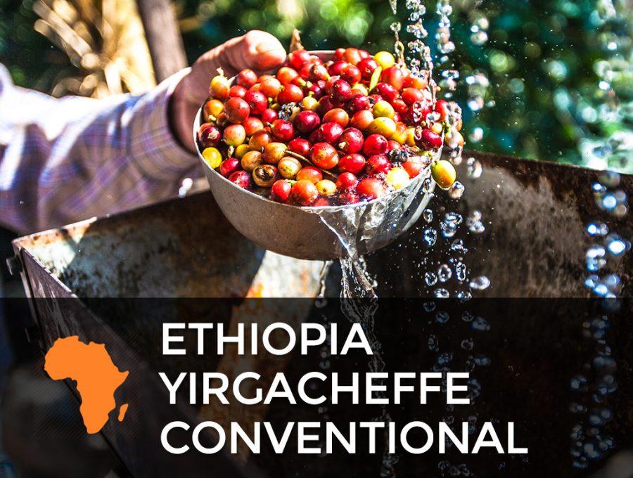 Ethiopia Yirgacheffe Conventional 900x680  Ethiopia Yirgacheffe - Conventional