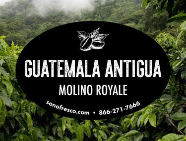 Guatemala Antigua Molino Royale Coffee Beans 375x283  Sea to Shining Sea Blend