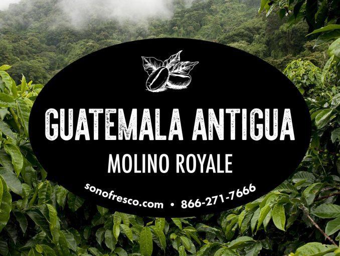 Guatemala Antigua Molino Royale Coffee Beans 678x512  Guatemala Antigua Molino Royale