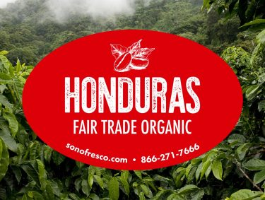 Honduras FTO Beans 375x283  Profile Coffee Roaster