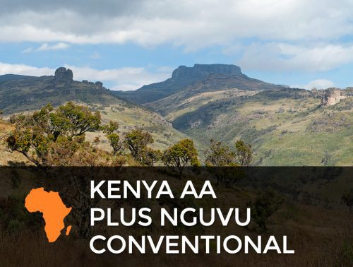 Kenya AA Plus Nguvu Conventional  500x378  Emperor's Selection Espresso Blend