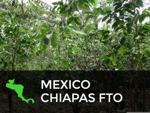 MEXICO CHIAPAS FTO 500x378  Costa Rica Willows Estate RFA Certified