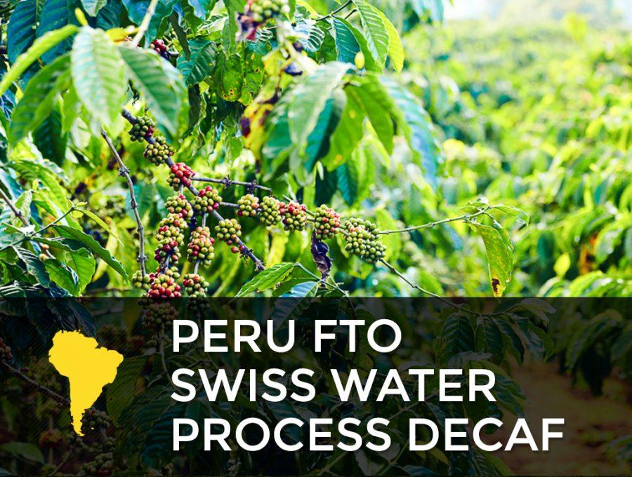 Peru FTO Swiss Water Process Decaf 900x680  Peru FTO - Swiss Water Process Decaf