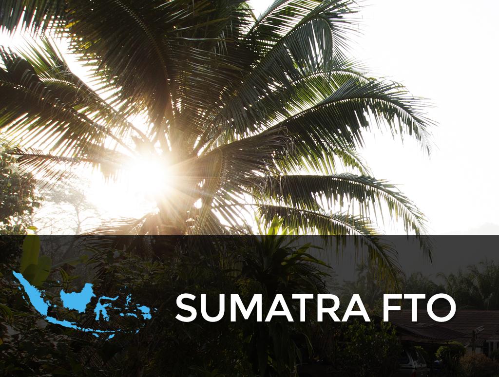 Sumatra FTO