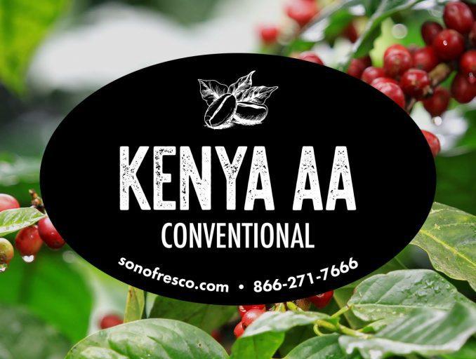 Kenya AA Conventional Beans 678x512  Kenya AA - Conventional
