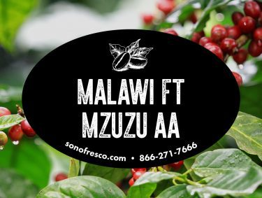 Malawi FT Mzuzu AA Beans 375x283 Jazz Note Blend