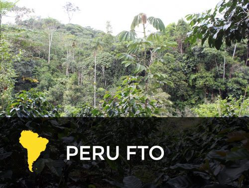 Peru FTO 500x378  Mexico Royal Select FTO Decaf