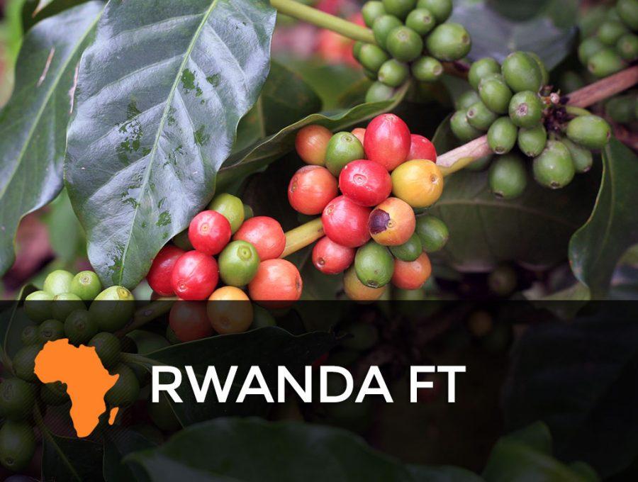 Rwanda FT 900x680  Rwanda FT