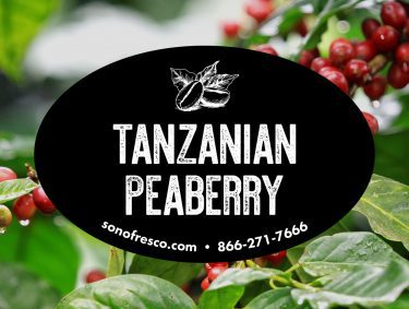 African Green Coffee Beans Uganda Ethiopia Rwanda Malawi Kenya