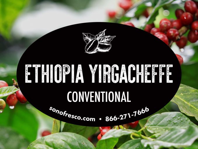 Ethiopia Yirgacheffe Conventional Coffee Beans 678x512  Ethiopia Yirgacheffe - Conventional