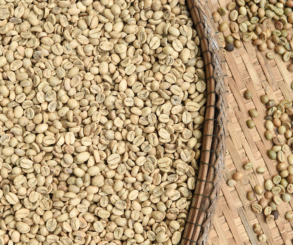 unroasted green coffee beans for sale  Build A Box