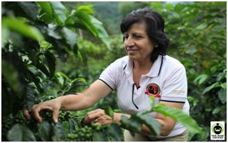 sfco1  Cafe Femenino – Great coffee – Great cause