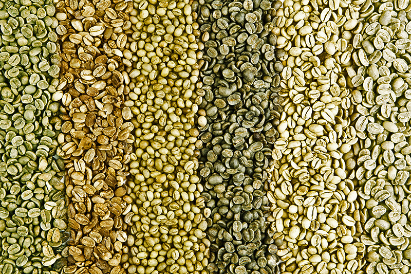 Unroasted Green Coffee Beans For Sale Green Coffee Beans