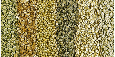 Benefits to Roasting Your Own Coffee at Home
