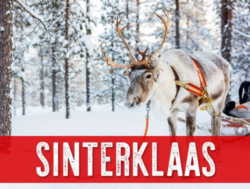 Sonofresco Sinterklaas Christmas Blend Product 500x378  What Decaffeinated coffee should you drink this holiday Season?